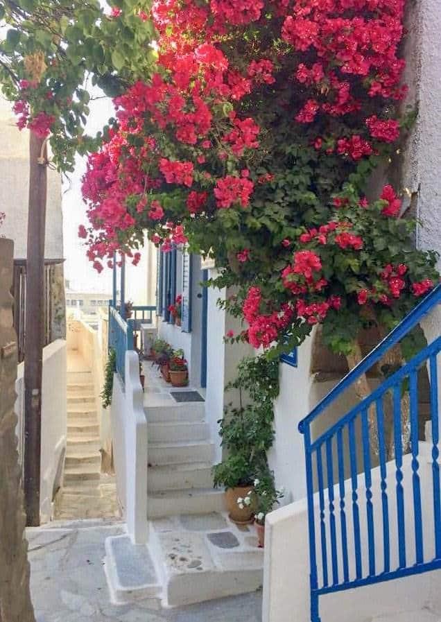 naxos laneway
