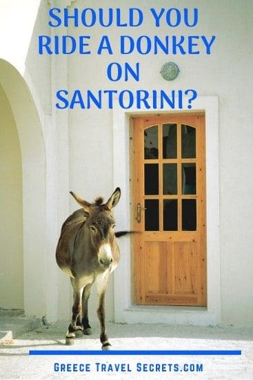 greece donkey